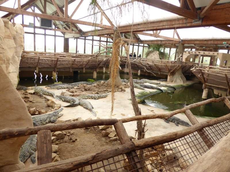zicht_indoor_Alligator_Bay