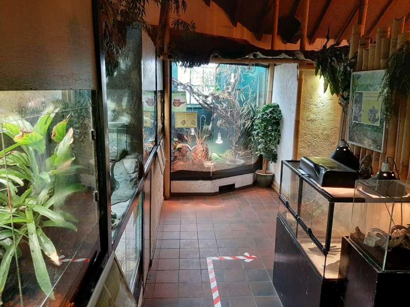 terrariums Dierenpark De Oliemeulen