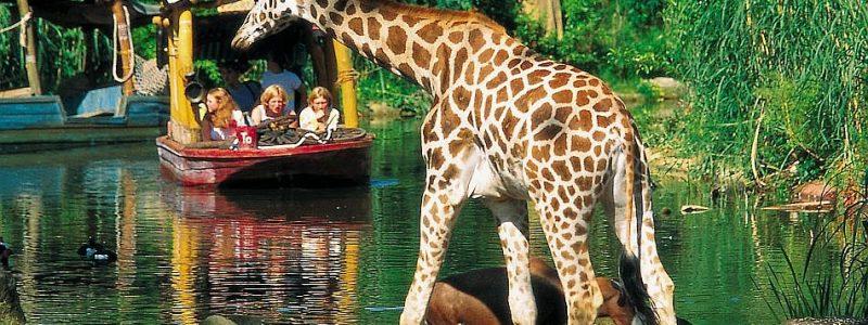 Erlebnis Zoo Hannover