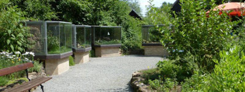 Freiland Aquarium Terrarium Stein