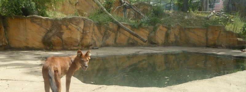 Neunkircher Zoo