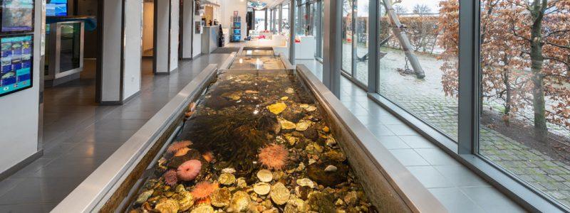 Oresund Aquarium Akvariet