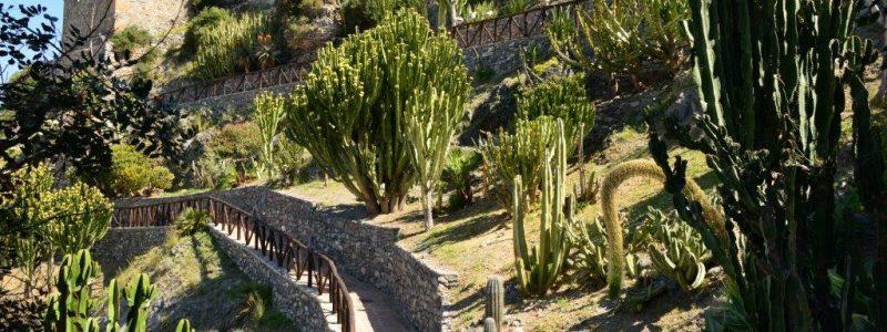 Parque Loro Sexi Andalucia