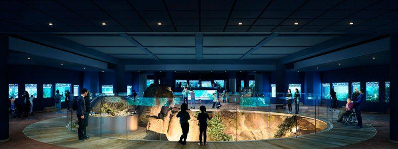 aquarium-de_la_porte_dore