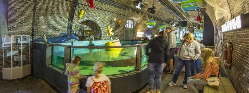 Fortkijkduin Aquarium 800