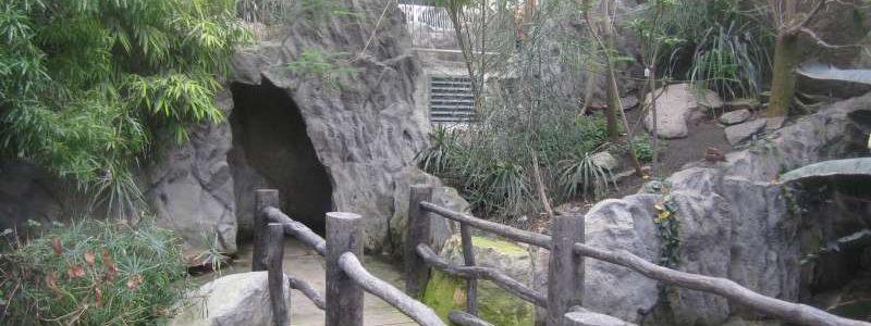 Mahajanga Parc Merveilleux