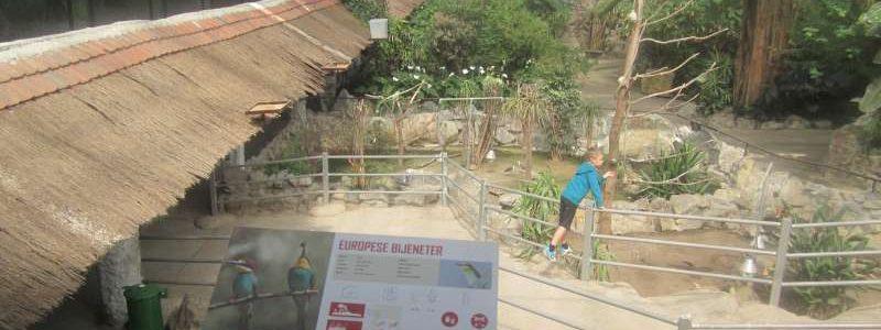 Tropenhal Olmense Zoo