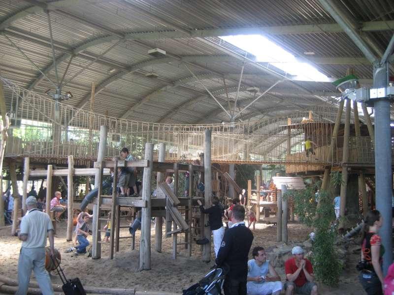 Indoor Speeltuin Ouwehands Dierenpark Rhenen 800