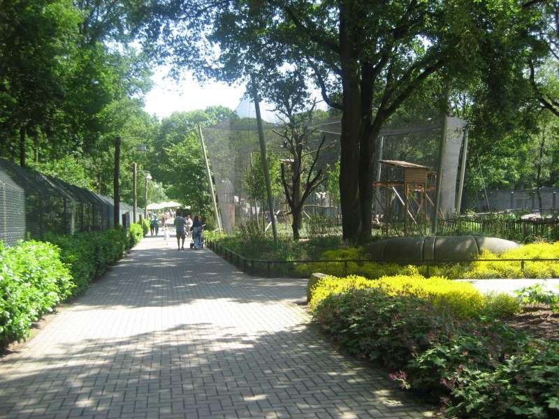 Zicht Ouwehands Dierenpark Rhenen 800