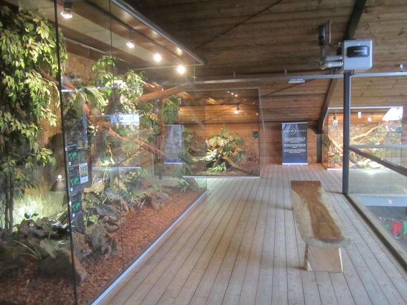 Zicht Binnen Reptielenhuis De Aarde