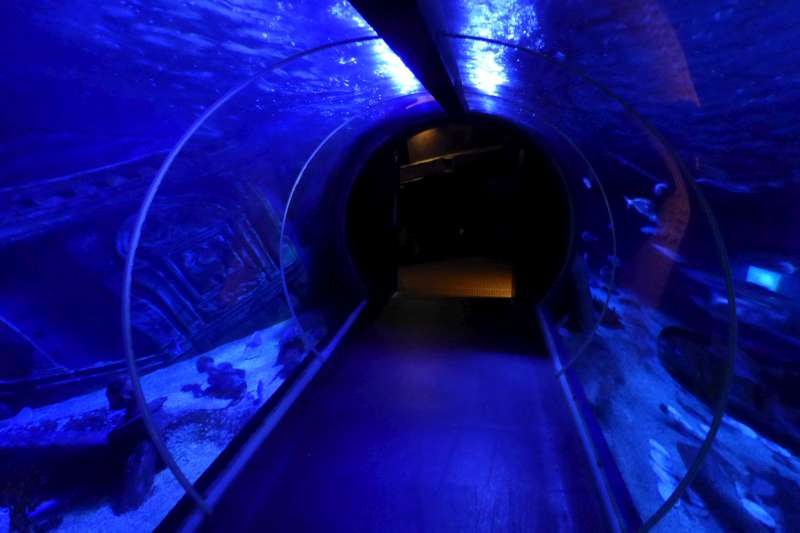 onderwater_tunnel__Sea_Life_Val_dEurope
