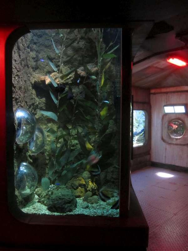 Aquarium Sea Life Scheveningen