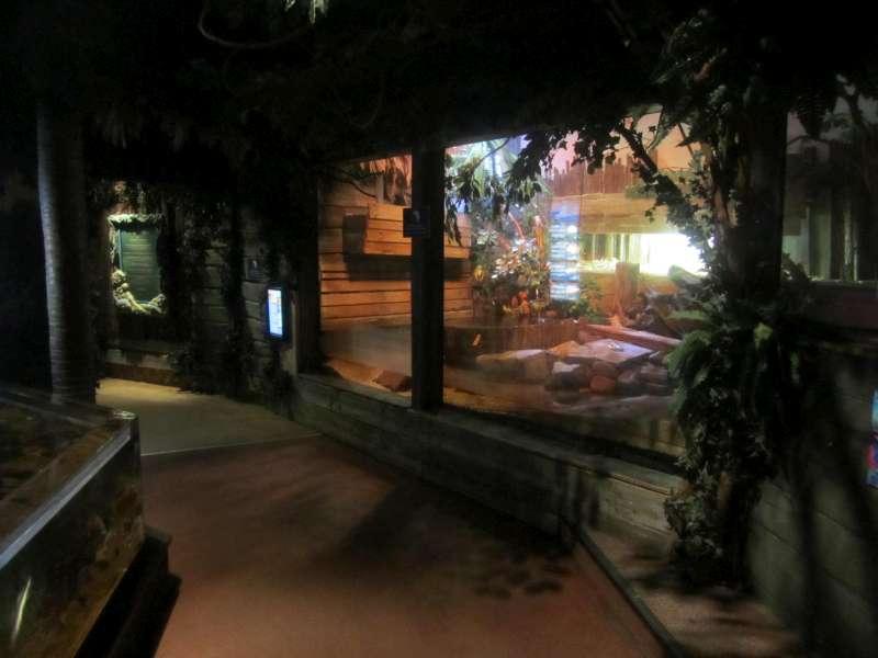 Terrarium Sea Life Scheveningen