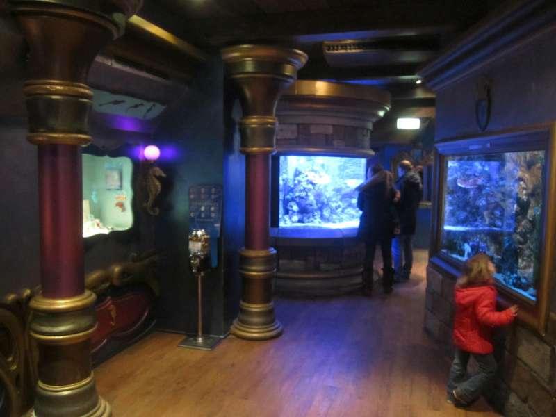 Zeepaarden Sea Life Scheveningen