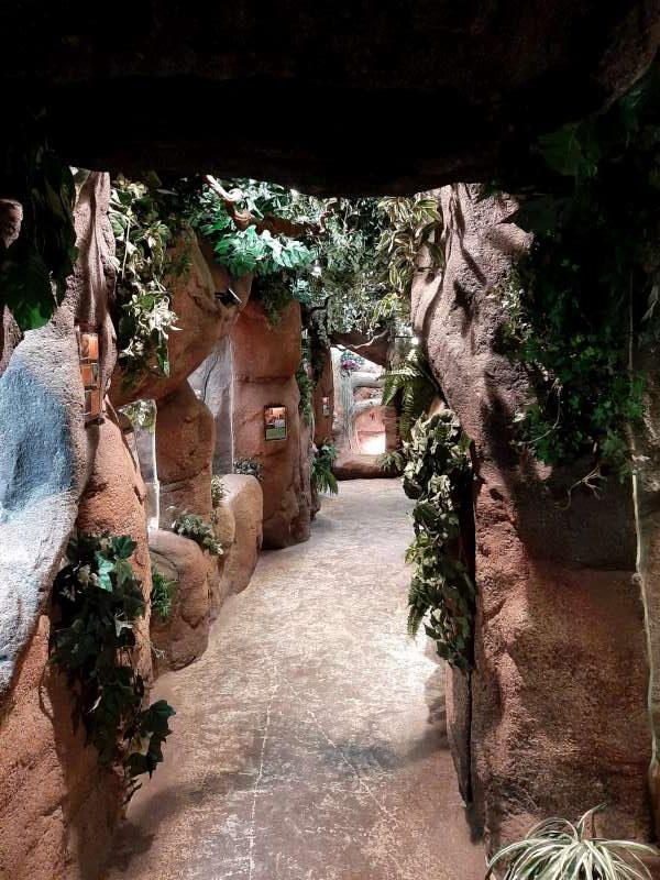 Jungle 2 Serpentarium