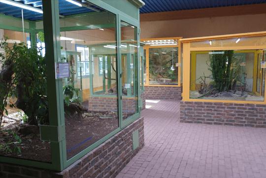 TerraZoo Rheinberg Reptilienhaus