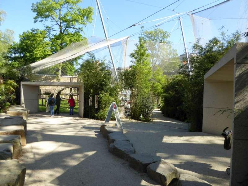 Mensapenvallei Zoo Antwerpen