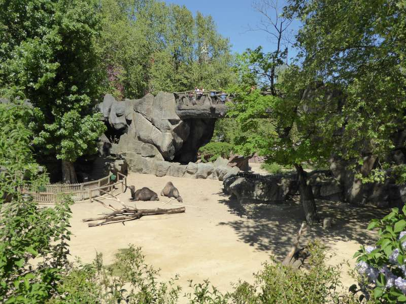 Zicht Zoo Antwerpen
