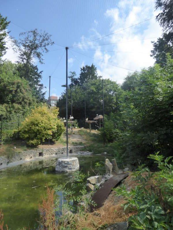 Zoo de Maubeuge volière