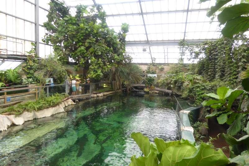 tropische_serre_Zoo_de_Beauval